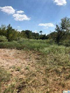tbd Cr 446A, Thorndale, TX 76577 (MLS #434940) :: Kopecky Group at RE/MAX Land & Homes