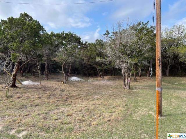 0 Hillside Drive, OTHER, TX 78003 (MLS #435617) :: The Zaplac Group
