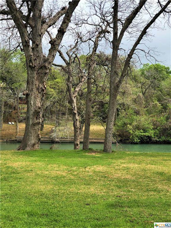 227 Signal Hill Road, Seguin, TX 78155 (MLS #435773) :: The Zaplac Group