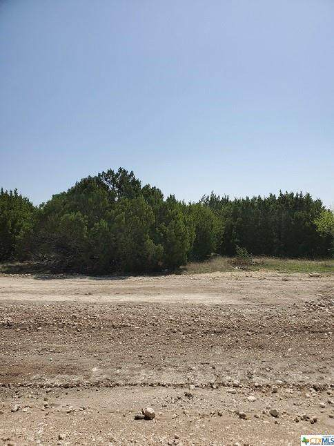 Lot 4 Coleton, Copperas Cove, TX 76522 (MLS #435851) :: The Zaplac Group