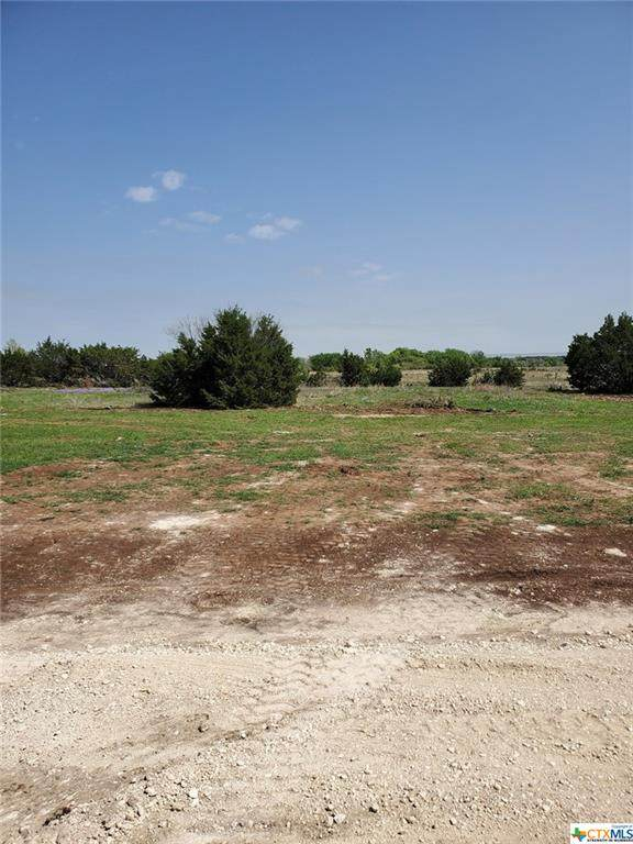 Lot 6 Coleton, Copperas Cove, TX 76522 (MLS #436110) :: The Zaplac Group