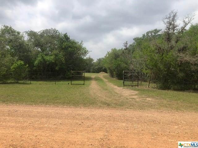 142 Mcadams Lane, Victoria, TX 77905 (MLS #436465) :: Kopecky Group at RE/MAX Land & Homes