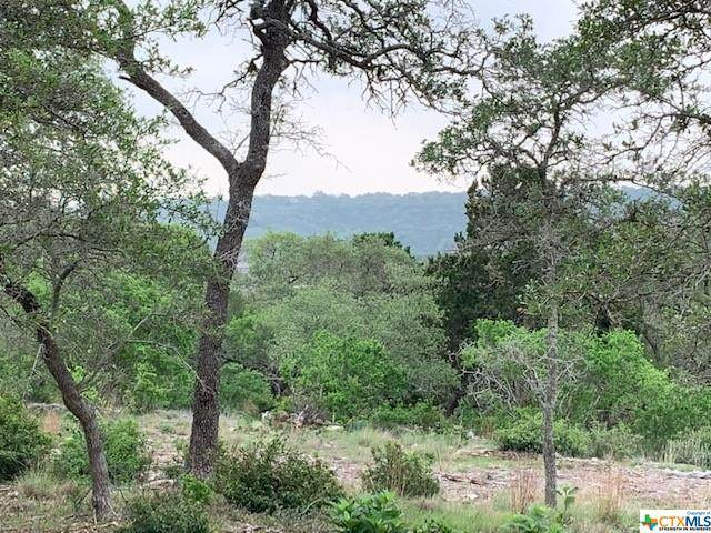 1064 Ranger Ridge, New Braunfels, TX 78132 (MLS #436714) :: Texas Real Estate Advisors