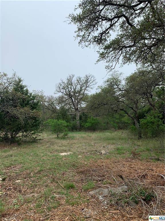 1110 Provence Place, New Braunfels, TX 78132 (MLS #437027) :: Texas Real Estate Advisors
