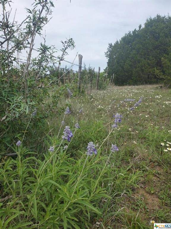 Lot 104 Reserve Drive, Lampasas, TX 76550 (MLS #437162) :: The Curtis Team