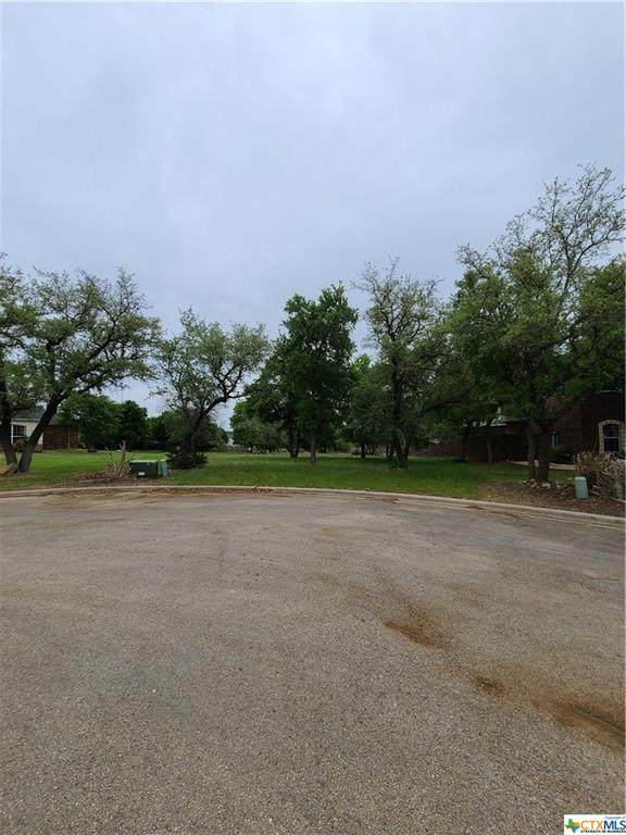 3918 Walden Creek Crossing, Harker Heights, TX 76548 (MLS #437202) :: RE/MAX Family