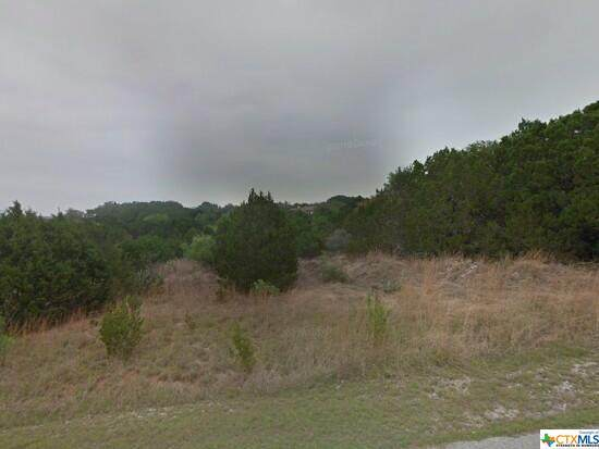 21706 Pope Drive, Lago Vista, TX 78645 (MLS #439154) :: Rutherford Realty Group