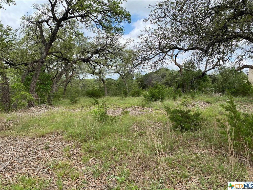 5697 Comal Vista - Photo 1