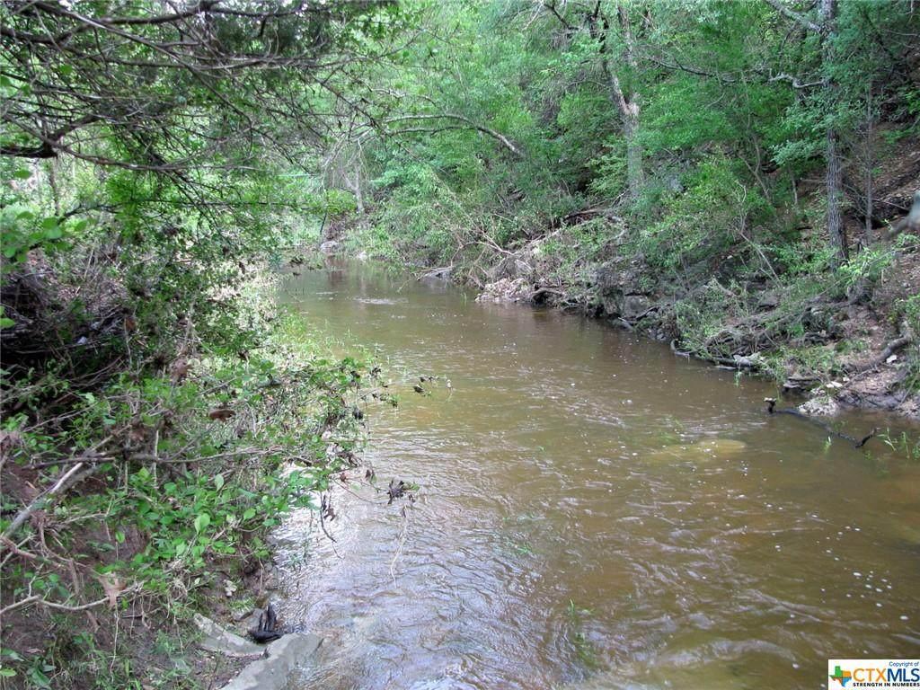 TBD County Road 405 - Photo 1