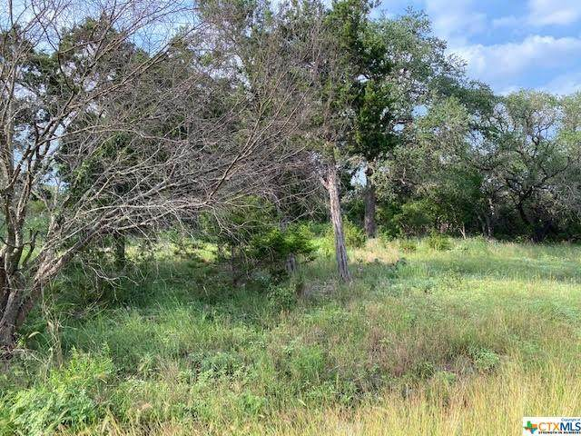 241 Longwood, New Braunfels, TX 78132 (MLS #441699) :: The Real Estate Home Team
