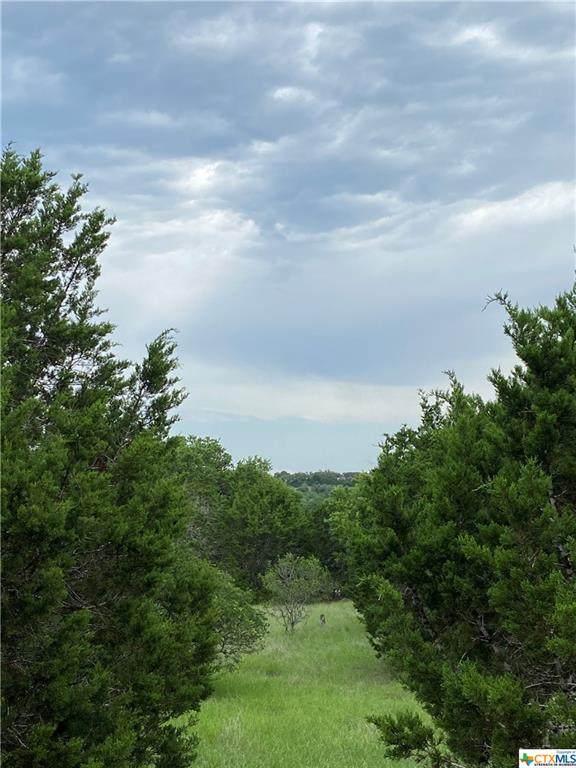 1121 Cordova Bend, Canyon Lake, TX 78133 (MLS #442232) :: Texas Real Estate Advisors