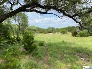 318 Upland Court, Canyon Lake, TX 78133 (MLS #442536) :: Rebecca Williams