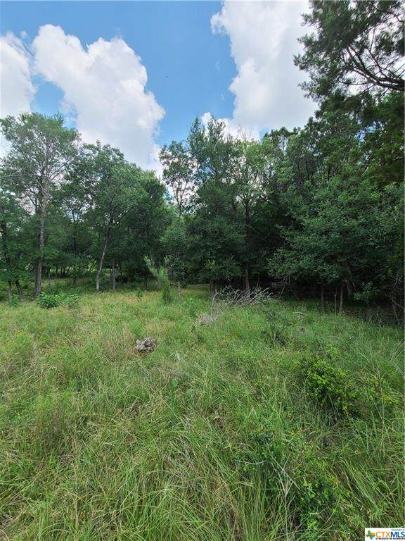tbd Quail Hollow Road, Harker Heights, TX 76548 (MLS #442757) :: RE/MAX Family