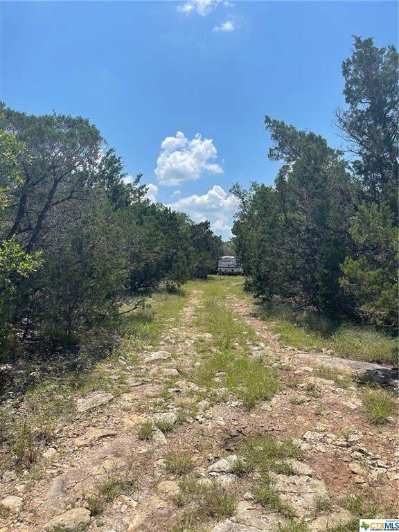 2701 Alpine Trail, San Marcos, TX 78666 (#442941) :: Realty Executives - Town & Country