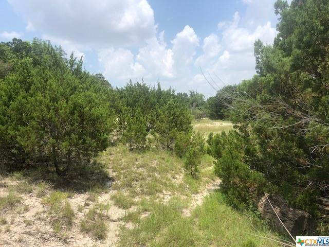 2.71 +/- Acres Ritter Street, Copperas Cove, TX 76522 (#443746) :: Sunburst Realty