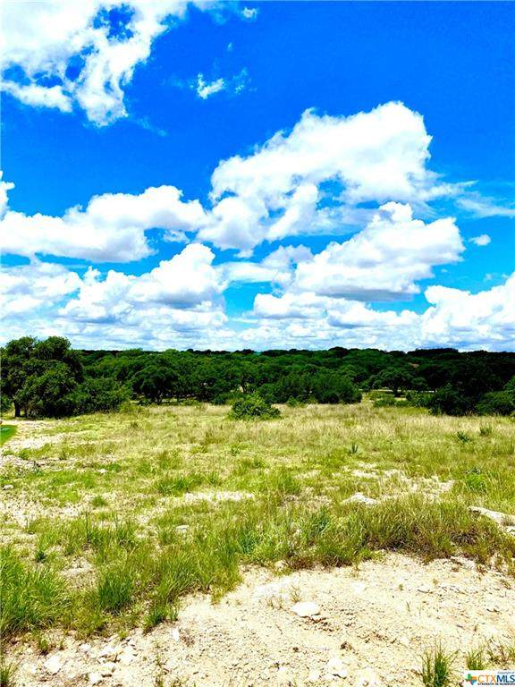 134 George Dolson, Blanco, TX 78606 (MLS #444879) :: Rutherford Realty Group