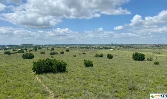 TR 14 County Road 2337, Lampasas, TX 76550 (MLS #445520) :: RE/MAX Family