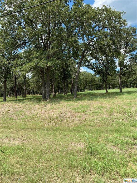 152 Arbor Hill Way, Cedar Creek, TX 78612 (MLS #446543) :: RE/MAX Family