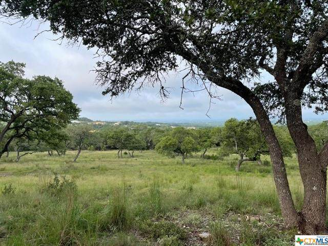 1070 Madrone Road, Fischer, TX 78623 (MLS #446904) :: Texas Real Estate Advisors