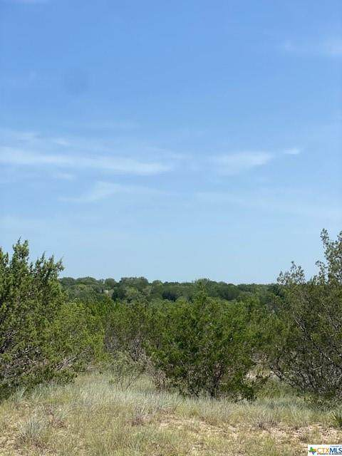 174 Private Road 3449, Kempner, TX 76539 (MLS #447181) :: The Zaplac Group