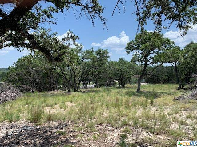 110 Janine Drive, Canyon Lake, TX 78133 (MLS #447416) :: Rutherford Realty Group