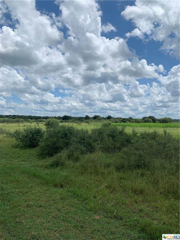 Lot 117 Settlement Way, Luling, TX 78648 (MLS #448169) :: The Myles Group