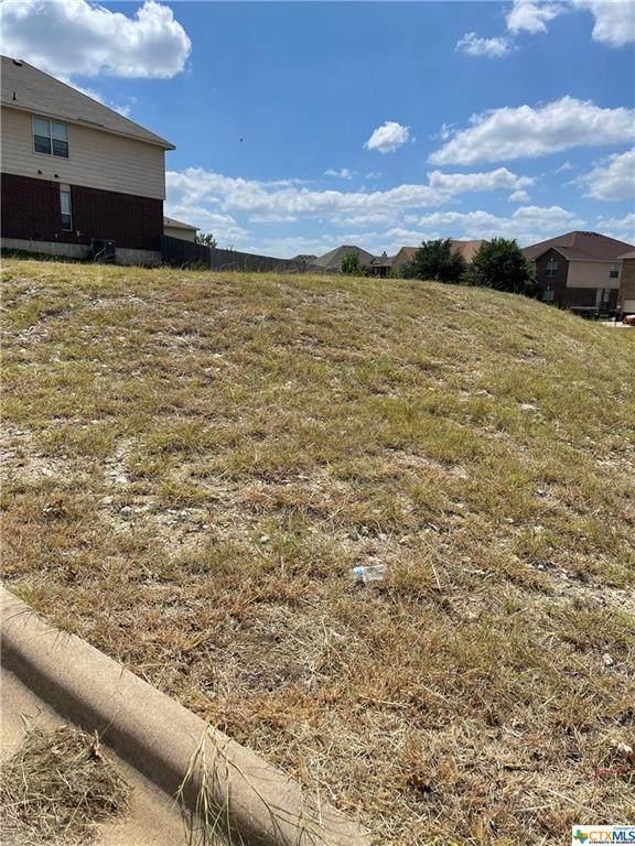2500 Laguna Drive, Harker Heights, TX 76548 (MLS #448228) :: Texas Real Estate Advisors