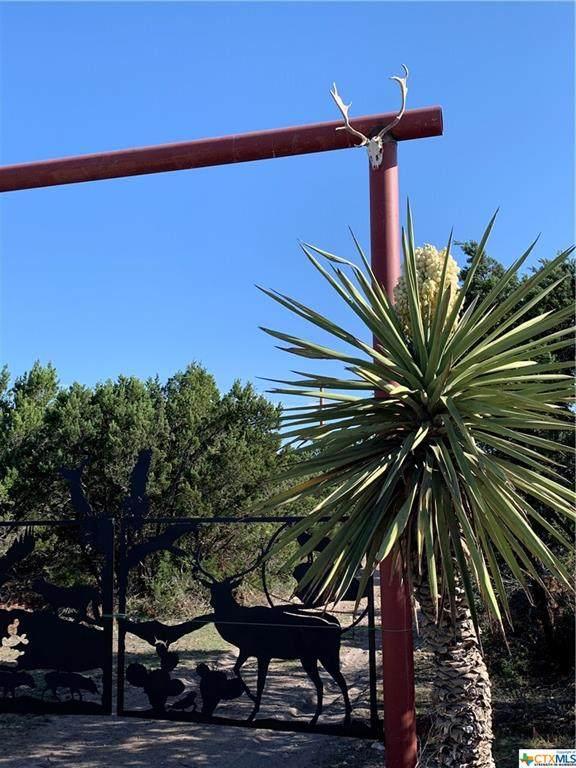 2316 Sd 65068, Brackettville, TX 78832 (MLS #448344) :: Texas Real Estate Advisors