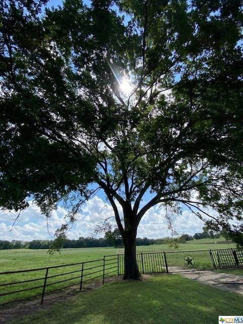 465 Oak Grove Road, Luling, TX 78648 (MLS #448451) :: Rutherford Realty Group