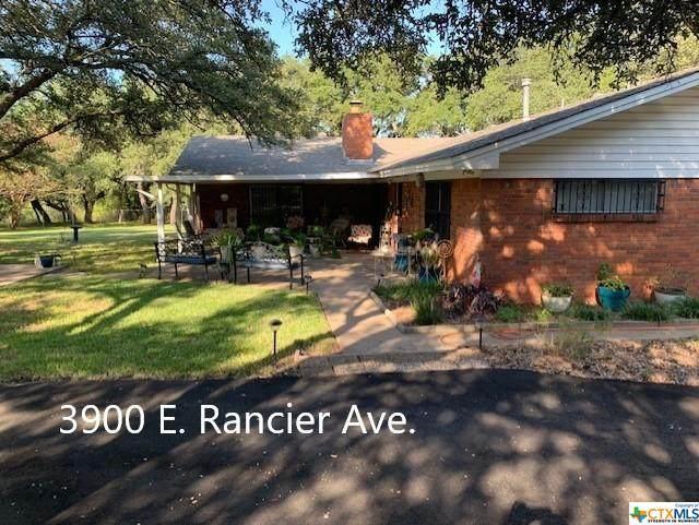 3900 & 3906 E Rancier Avenue, Killeen, TX 76543 (MLS #450221) :: Rutherford Realty Group