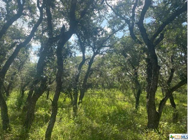 000 Franke Rd, Goliad, TX 77963 (MLS #450509) :: RE/MAX Land & Homes