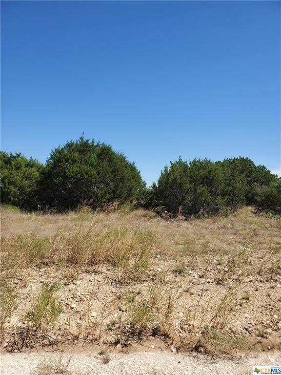 313 Martin Drive, Copperas Cove, TX 76522 (MLS #452257) :: Rebecca Williams