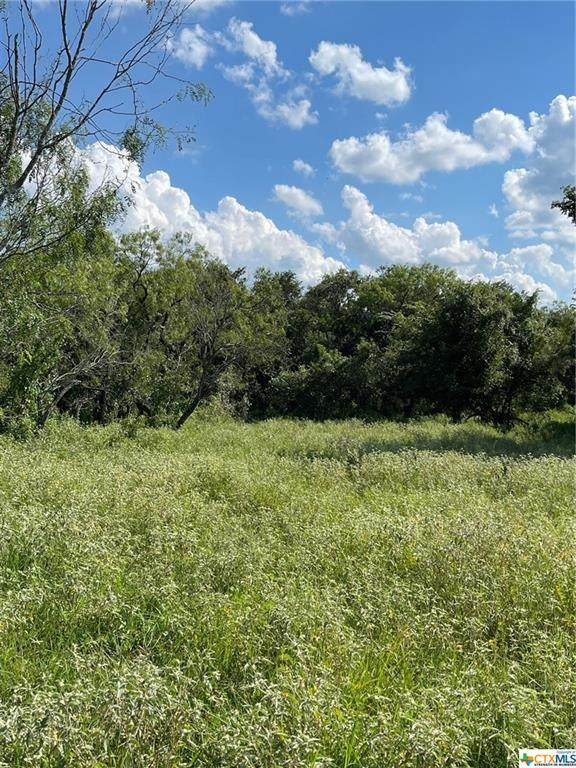 TBD (TR 1) County Road 467, Stockdale, TX 78160 (#452557) :: Empyral Group Realtors