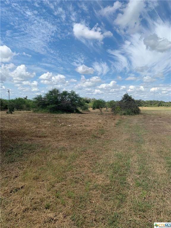 14 Fm 1726, Goliad, TX 77963 (MLS #452614) :: Brautigan Realty