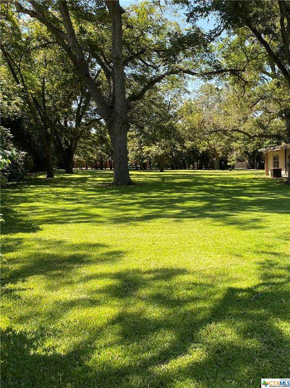 174 Guadalupe River Drive, Seguin, TX 78155 (MLS #452725) :: RE/MAX Family