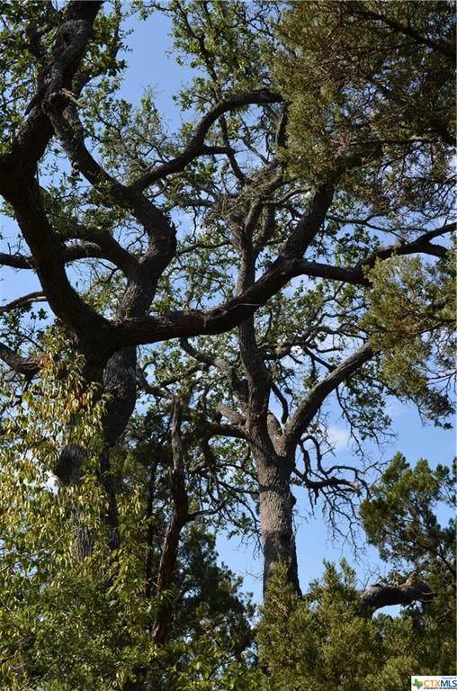 000 Lookout, Wimberley, TX 78676 (#453564) :: Sunburst Realty