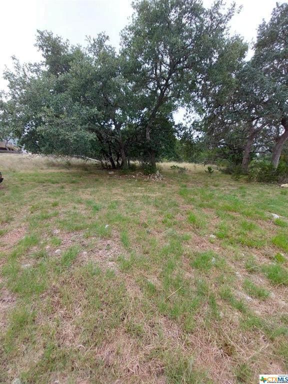 1050 Sunset Park, Spring Branch, TX 78070 (MLS #453647) :: Texas Real Estate Advisors