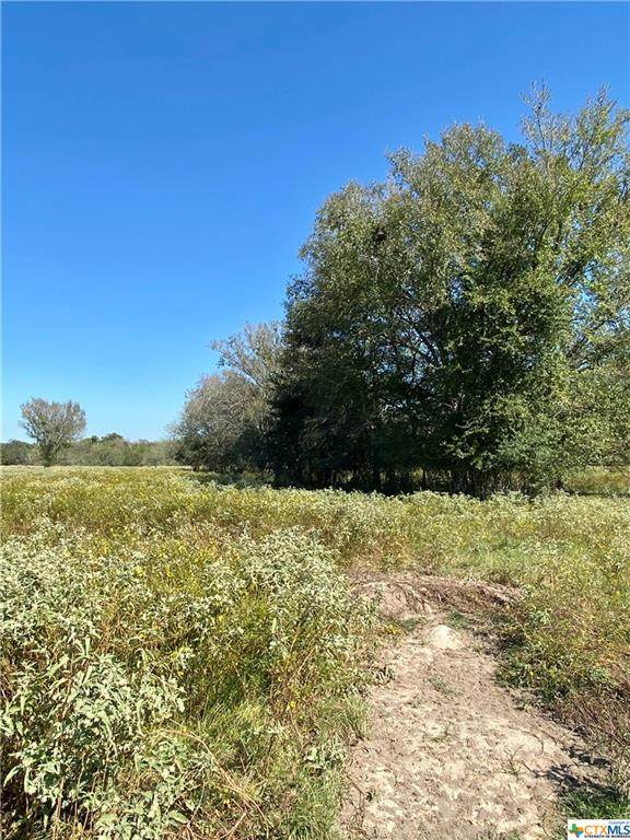TBD Tract D Baker Road, Kingsbury, TX 78638 (MLS #453777) :: Rutherford Realty Group