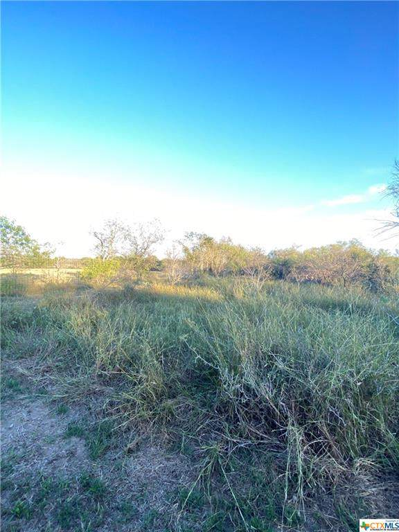 Tract 17 TBD Pooley Road, Kingsbury, TX 78638 (MLS #453880) :: Rutherford Realty Group