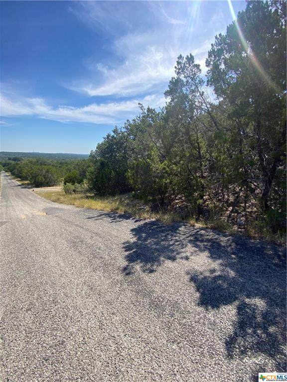 000 Arapaho Lane, OTHER, TX 78676 (MLS #454419) :: Kopecky Group at RE/MAX Land & Homes