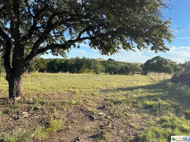 0 Private Road 1391, Gatesville, TX 76528 (MLS #454581) :: Brautigan Realty