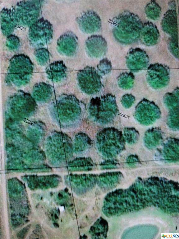 Unknown A-Lane, Seadrift, TX 77983 (MLS #454810) :: RE/MAX Land & Homes