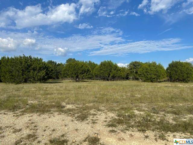 TBD Comanche Gap Road, Harker Heights, TX 76548 (MLS #454902) :: The Barrientos Group