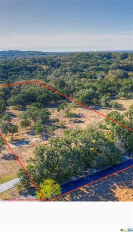 855 Ayers Rock, New Braunfels, TX 78132 (MLS #455355) :: Vista Real Estate