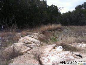 891 Hickory Drive, Killeen, TX 76542 (MLS #8155846) :: Erin Caraway Group