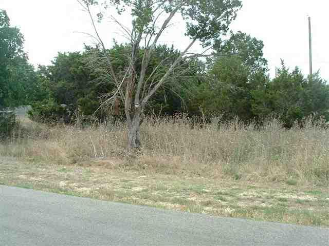 38 Blue Roan, Morgan's Point, TX 76513 (MLS #9097606) :: Vista Real Estate