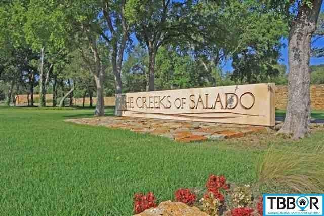 2046 The Creeks Drive, Salado, TX 76571 (MLS #9116597) :: Magnolia Realty
