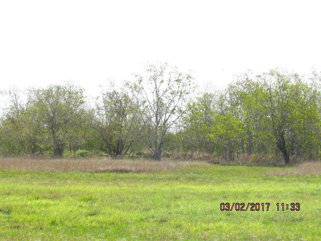 573 Wellspring Boulevard, Victoria, TX 77904 (MLS #V223831) :: RE/MAX Land & Homes