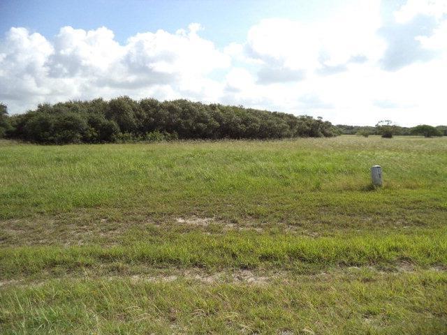19 Bayside Drive, Seadrift, TX 77983 (MLS #V224750) :: The i35 Group