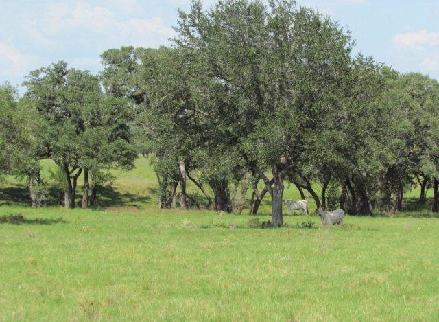 000 Cr 380, Hallettsville, TX 77964 (MLS #V225538) :: RE/MAX Land & Homes